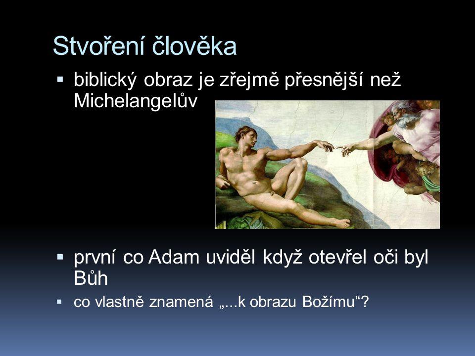 """Stvoření člověka  biblický obraz je zřejmě přesnější než Michelangelův  první co Adam uviděl když otevřel oči byl Bůh  co vlastně znamená """"...k obr"""