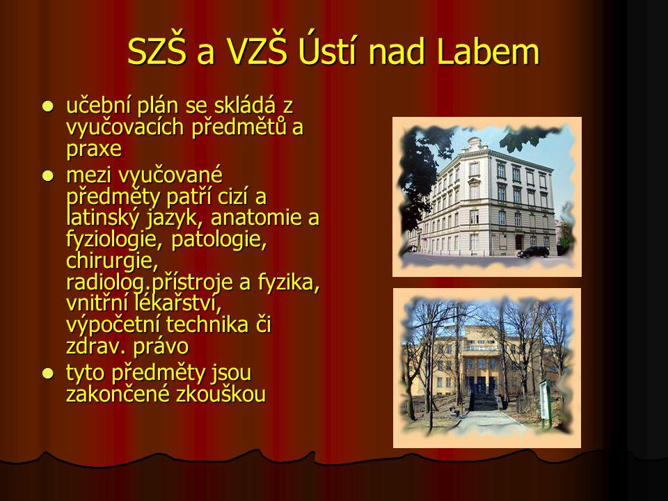 SZŠ a VZŠ Ústí nad Labem učební plán se skládá z vyučovacích předmětů a praxe učební plán se skládá z vyučovacích předmětů a praxe mezi vyučované před