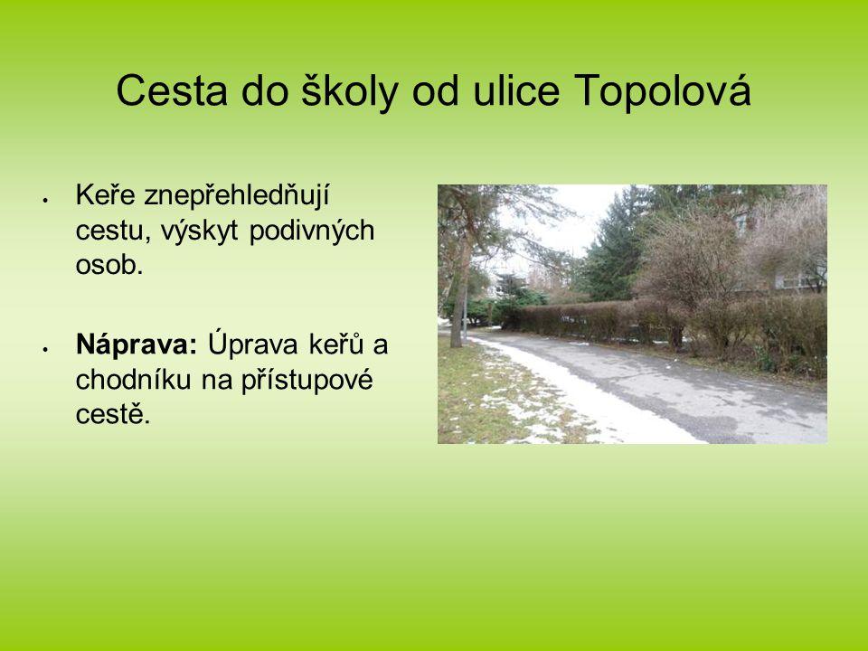Cesta do školy od ulice Topolová  Keře znepřehledňují cestu, výskyt podivných osob.