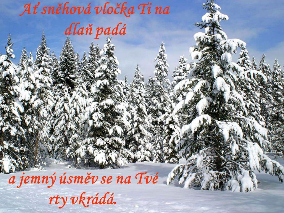 Ať sněhová vločka Ti na dlaň padá a jemný úsměv se na Tvé rty vkrádá.
