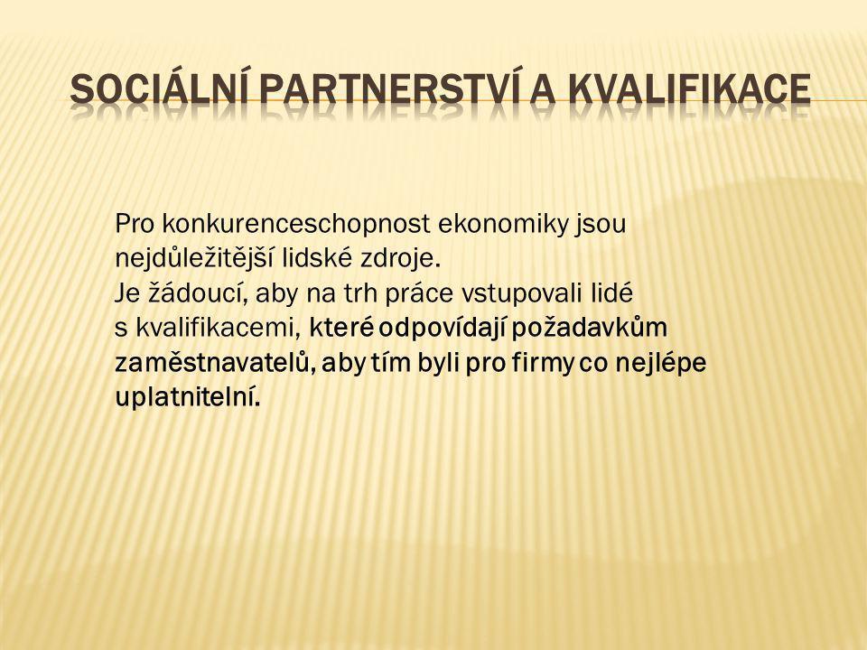 Sektorové rady jsou typem partnerství, který má na celostátní úrovni potenciál na to, aby ovlivnil celkový vývoj a vymezování povolání a kvalifikací v České republice.