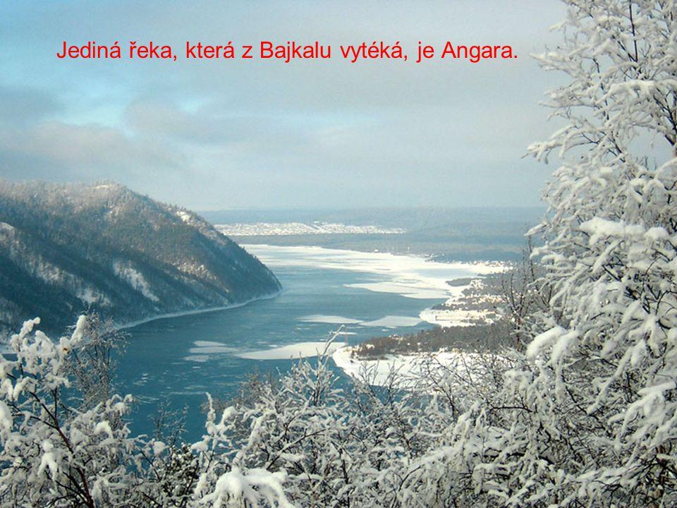 Jediná řeka, která z Bajkalu vytéká, je Angara.