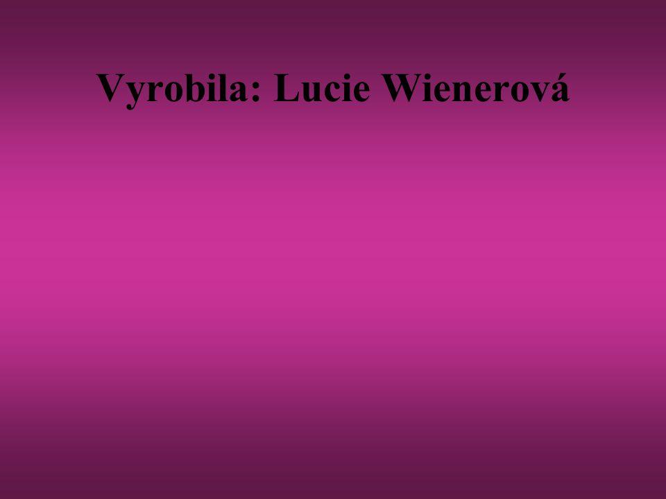 Fotografie třídy na 1. fotografii jsou Verča a Kristýna. na té druhé je Diana s Luckou.