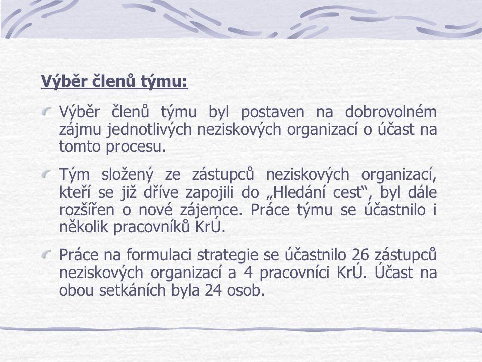 Výběr členů týmu: Výběr členů týmu byl postaven na dobrovolném zájmu jednotlivých neziskových organizací o účast na tomto procesu. Tým složený ze zást