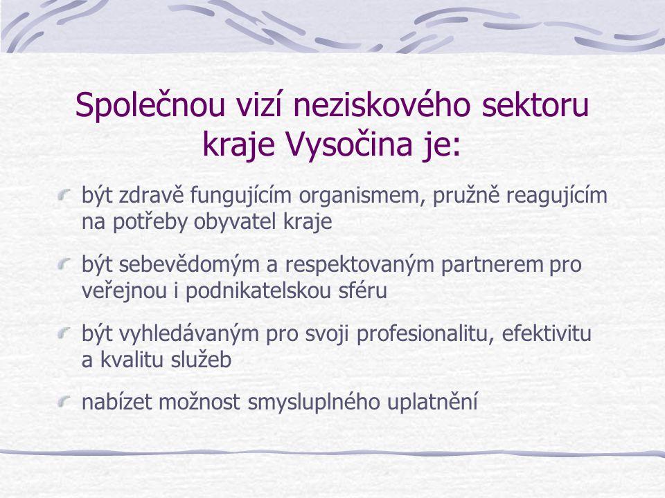Společnou vizí neziskového sektoru kraje Vysočina je: být zdravě fungujícím organismem, pružně reagujícím na potřeby obyvatel kraje být sebevědomým a respektovaným partnerem pro veřejnou i podnikatelskou sféru být vyhledávaným pro svoji profesionalitu, efektivitu a kvalitu služeb nabízet možnost smysluplného uplatnění