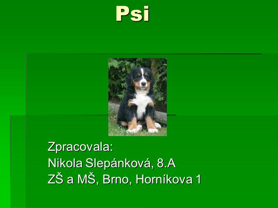 Psi Zpracovala: Nikola Slepánková, 8.A ZŠ a MŠ, Brno, Horníkova 1