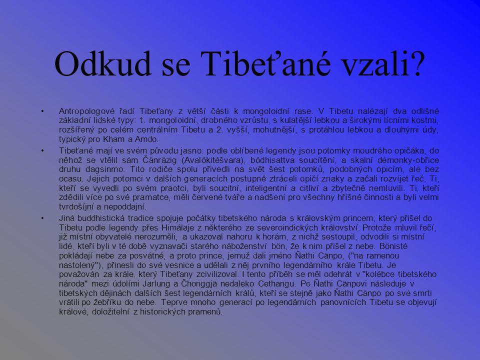 Odkud se Tibeťané vzali. Antropologové řadí Tibeťany z větší části k mongoloidní rase.