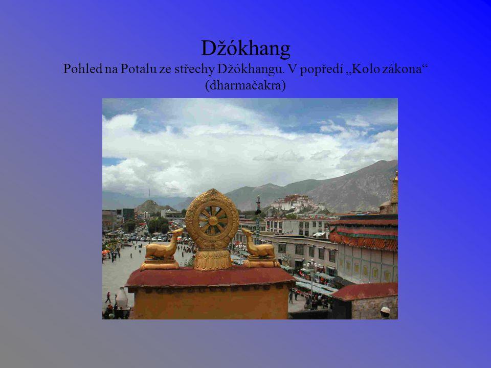 """Džókhang Pohled na Potalu ze střechy Džókhangu. V popředí """"Kolo zákona (dharmačakra)"""