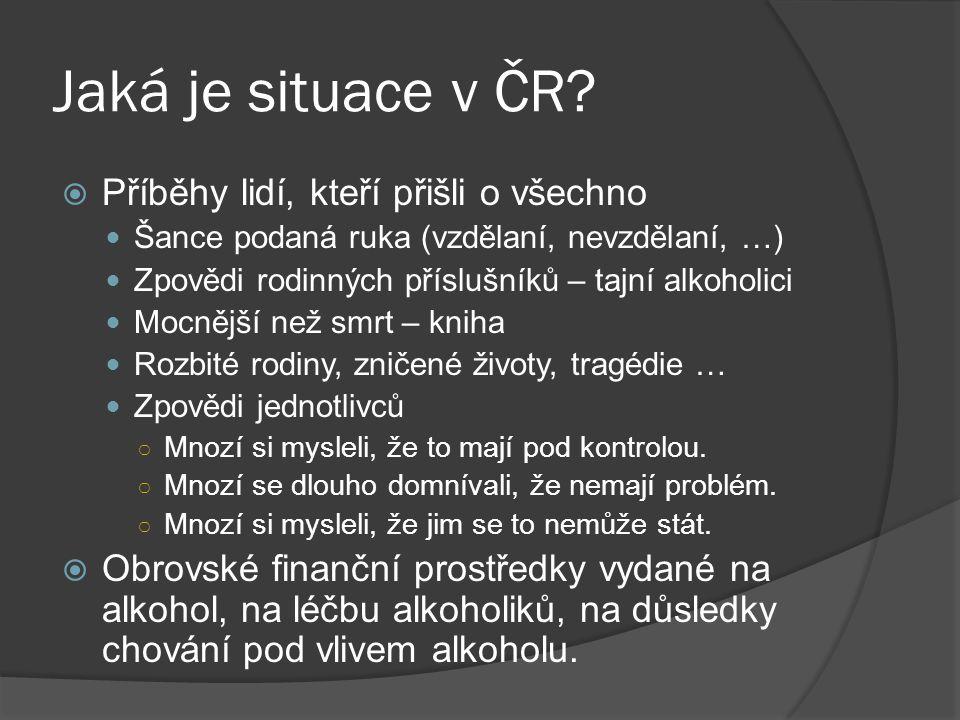Jaká je situace v ČR?  Příběhy lidí, kteří přišli o všechno Šance podaná ruka (vzdělaní, nevzdělaní, …) Zpovědi rodinných příslušníků – tajní alkohol