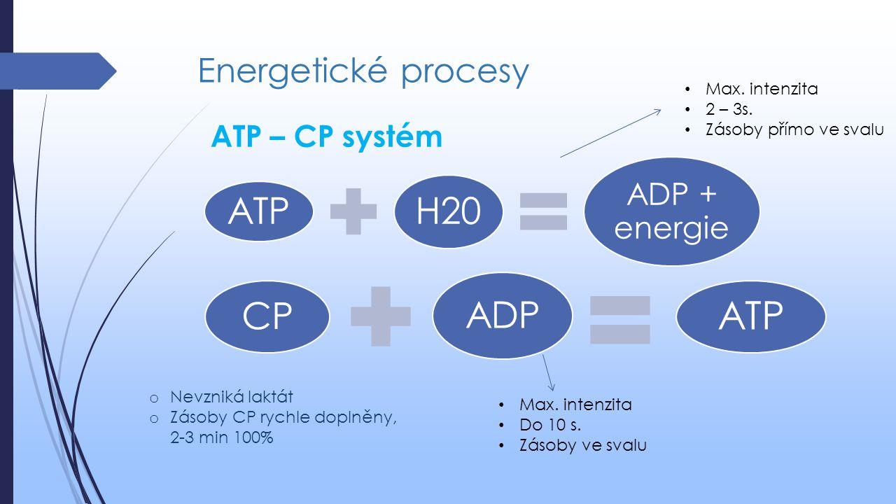Energetické procesy ATP H20 ADP + energie CP ADP ATP ATP – CP systém Max. intenzita 2 – 3s. Zásoby přímo ve svalu Max. intenzita Do 10 s. Zásoby ve sv