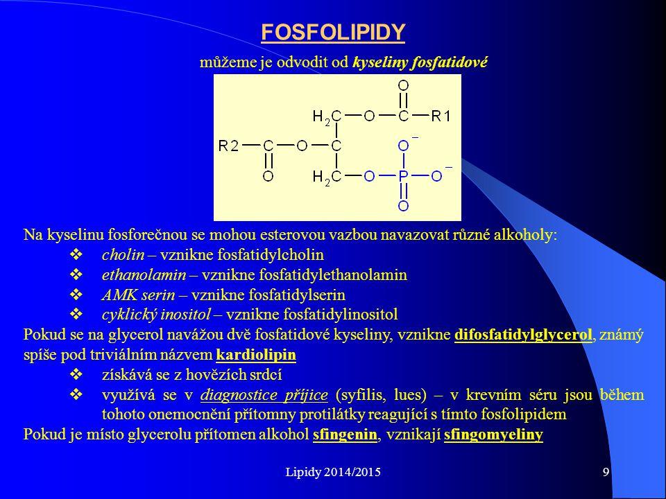 Lipidy 2014/20159 můžeme je odvodit od kyseliny fosfatidové FOSFOLIPIDY Na kyselinu fosforečnou se mohou esterovou vazbou navazovat různé alkoholy: 