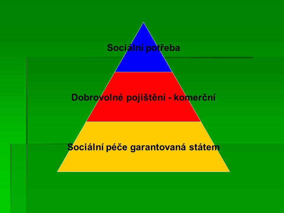 Sociální potřeba Dobrovolné pojištění - komerční Sociální péče garantovaná státem