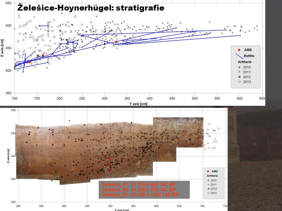 Zelesice_01: 37 700 ± 800 14C BP Zelesice_02: 41 300 ± 700 14C BP Zelesice_03: 42 500 ± 1500 14C BP Želešice-Hoynerhügel: stratigrafie