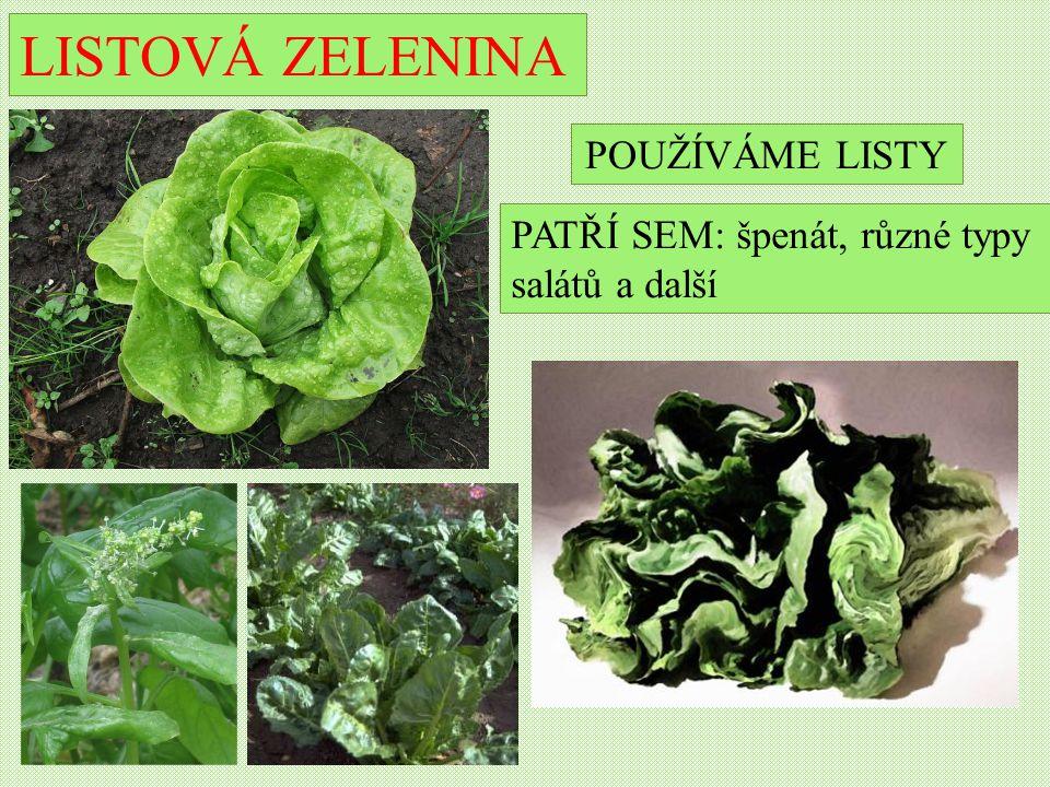 LISTOVÁ ZELENINA PATŘÍ SEM: špenát, různé typy salátů a další POUŽÍVÁME LISTY