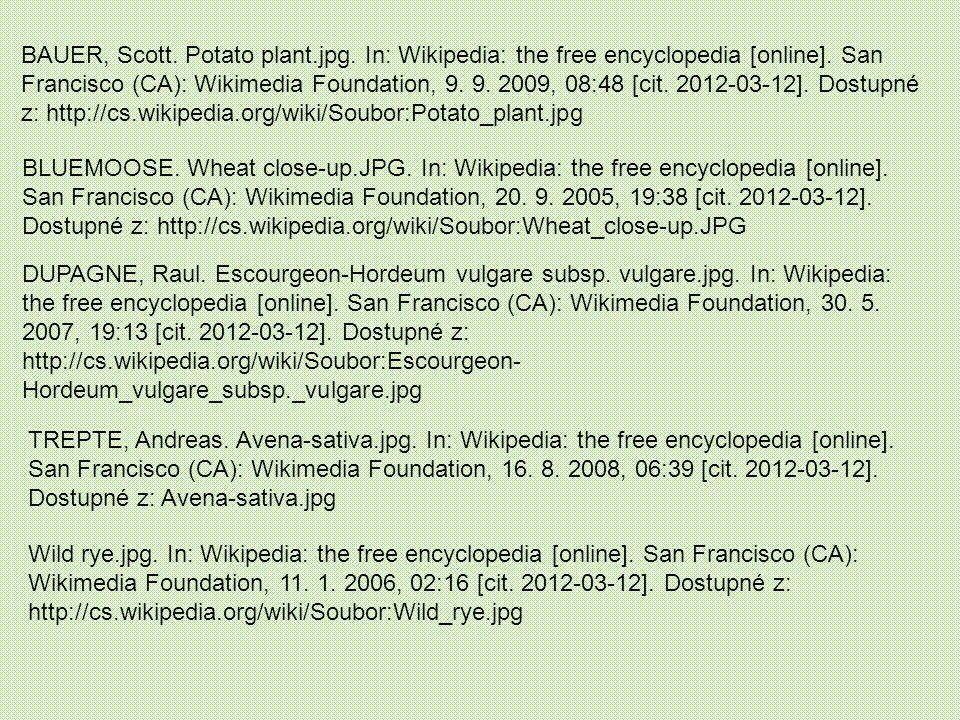 BAUER, Scott.Potato plant.jpg. In: Wikipedia: the free encyclopedia [online].