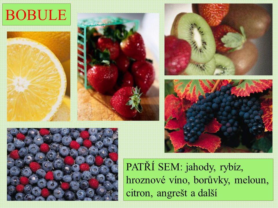BOBULE PATŘÍ SEM: jahody, rybíz, hroznové víno, borůvky, meloun, citron, angrešt a další