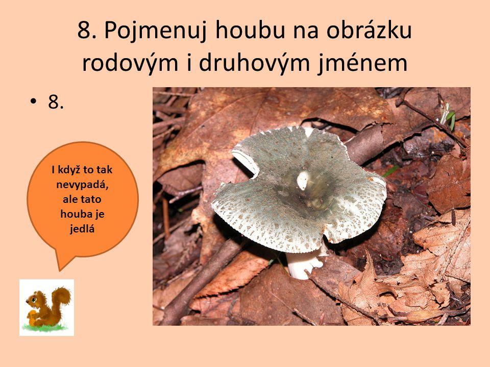 8. Pojmenuj houbu na obrázku rodovým i druhovým jménem 8. I když to tak nevypadá, ale tato houba je jedlá