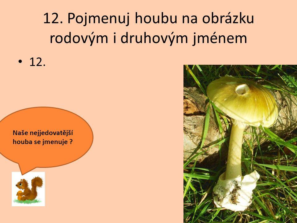 12. Pojmenuj houbu na obrázku rodovým i druhovým jménem 12. Naše nejjedovatější houba se jmenuje ?
