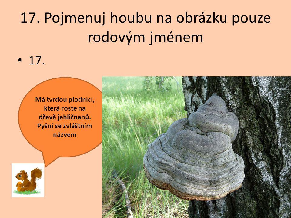 17. Pojmenuj houbu na obrázku pouze rodovým jménem 17. Má tvrdou plodnici, která roste na dřevě jehličnanů. Pyšní se zvláštním názvem