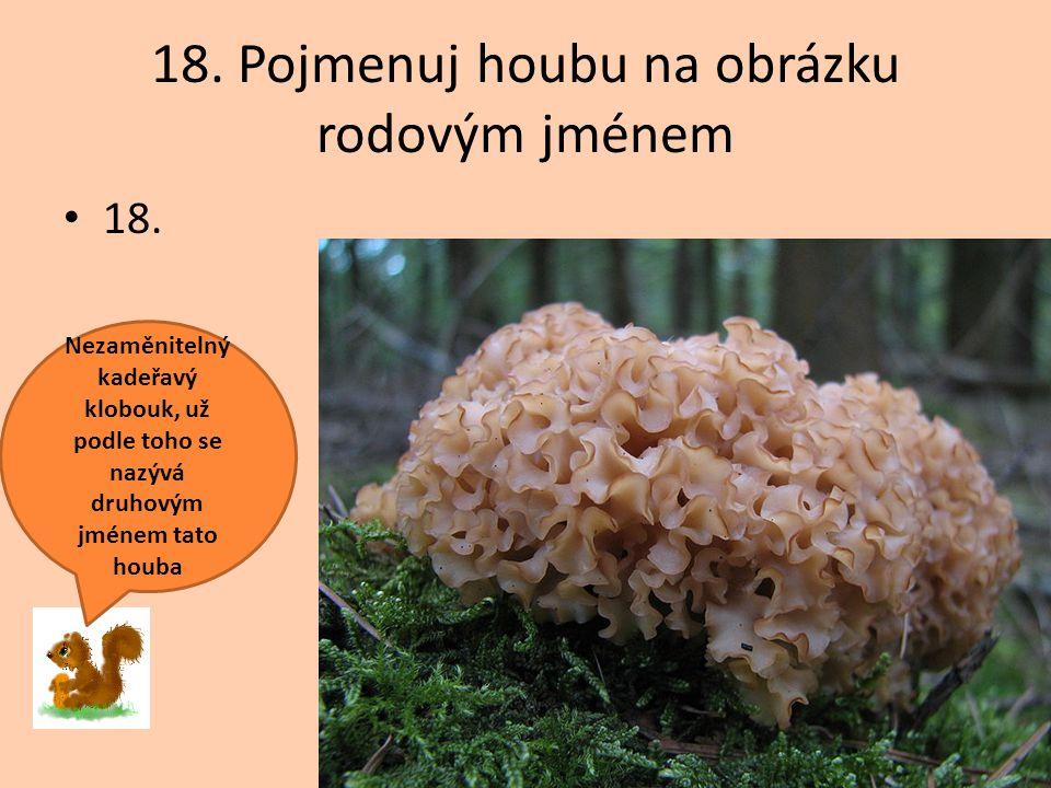 18. Pojmenuj houbu na obrázku rodovým jménem 18. Nezaměnitelný kadeřavý klobouk, už podle toho se nazývá druhovým jménem tato houba