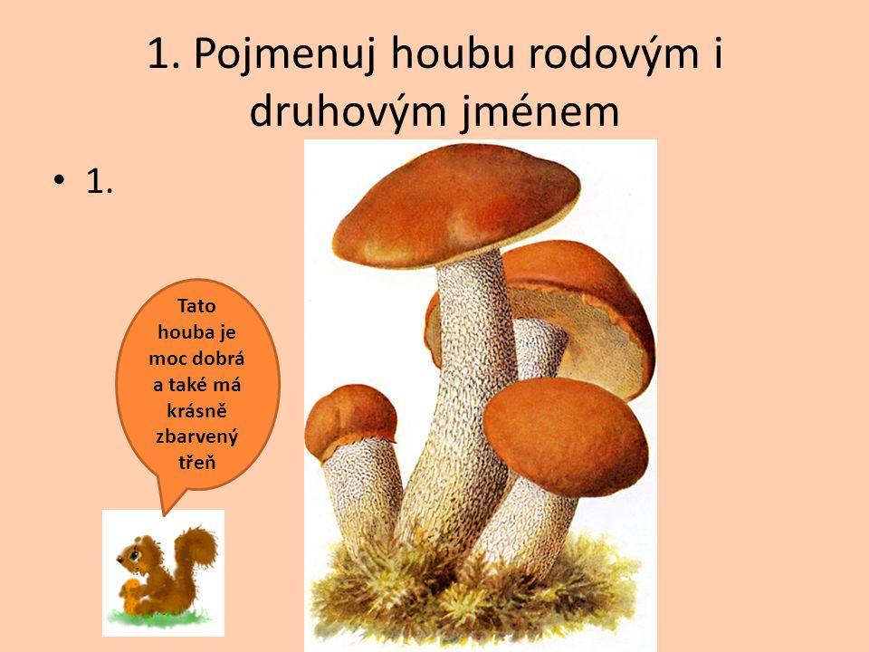 1. Pojmenuj houbu rodovým i druhovým jménem 1. Tato houba je moc dobrá a také má krásně zbarvený třeň