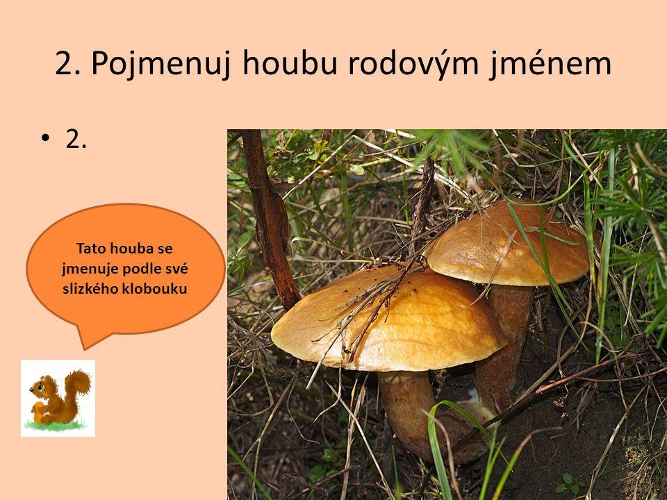 2. Pojmenuj houbu rodovým jménem 2. Tato houba se jmenuje podle své slizkého klobouku