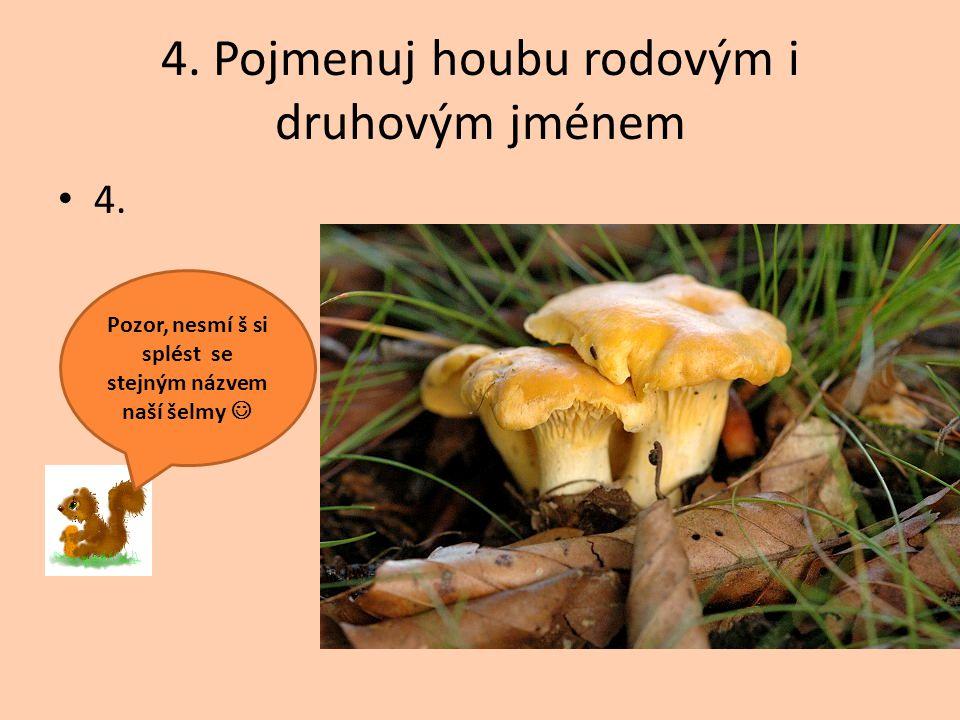 4. Pojmenuj houbu rodovým i druhovým jménem 4. Pozor, nesmí š si splést se stejným názvem naší šelmy