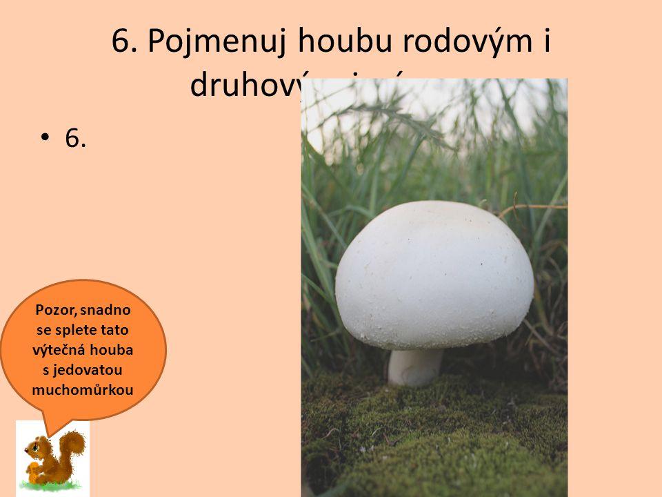 6. Pojmenuj houbu rodovým i druhovým jménem 6. Pozor, snadno se splete tato výtečná houba s jedovatou muchomůrkou
