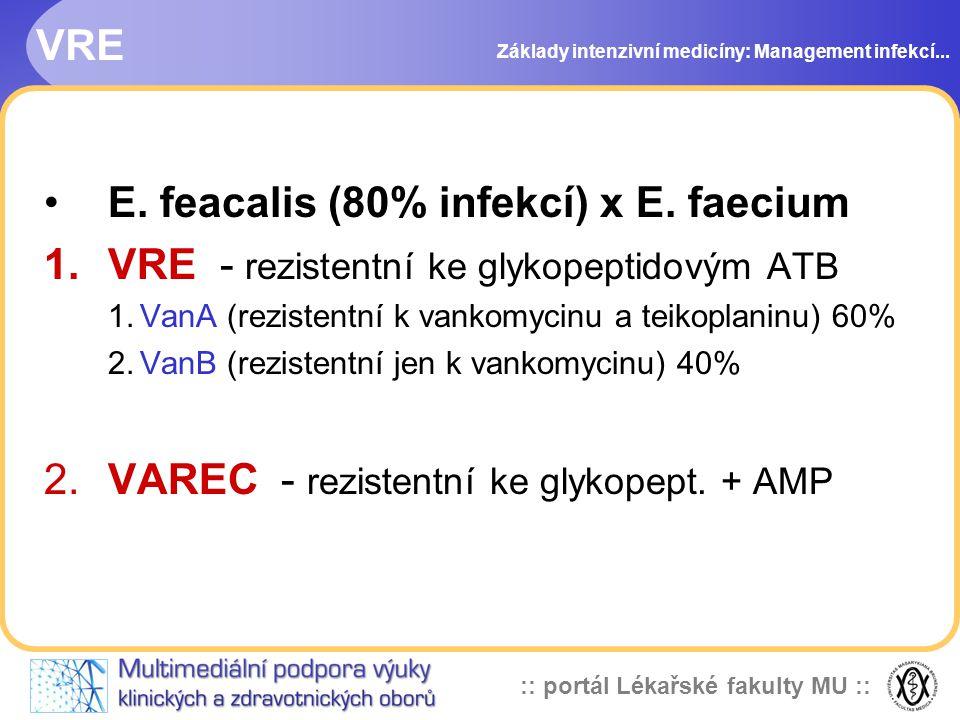 :: portál Lékařské fakulty MU :: VRE E.feacalis (80% infekcí) x E.