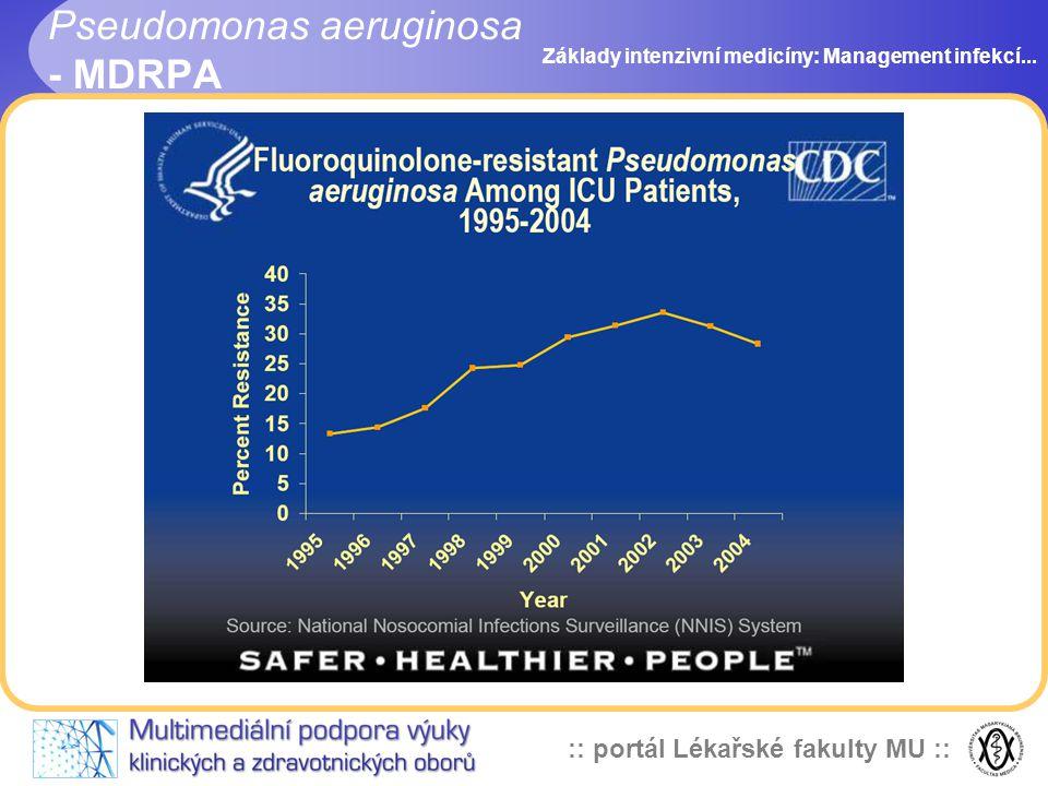 :: portál Lékařské fakulty MU :: Pseudomonas aeruginosa - MDRPA Základy intenzivní medicíny: Management infekcí...