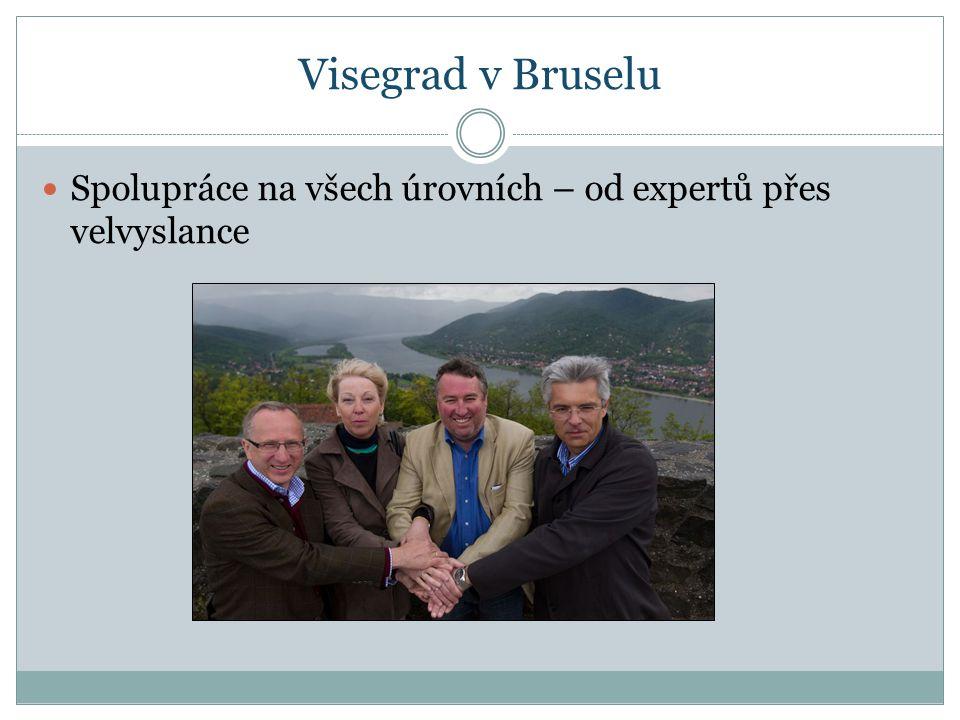 Visegrad v Bruselu Spolupráce na všech úrovních – od expertů přes velvyslance