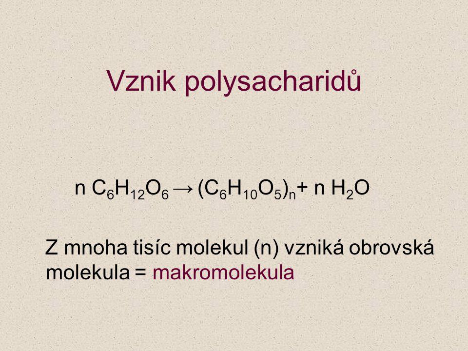 Vznik polysacharidů n C 6 H 12 O 6 → (C 6 H 10 O 5 ) n + n H 2 O Z mnoha tisíc molekul (n) vzniká obrovská molekula = makromolekula