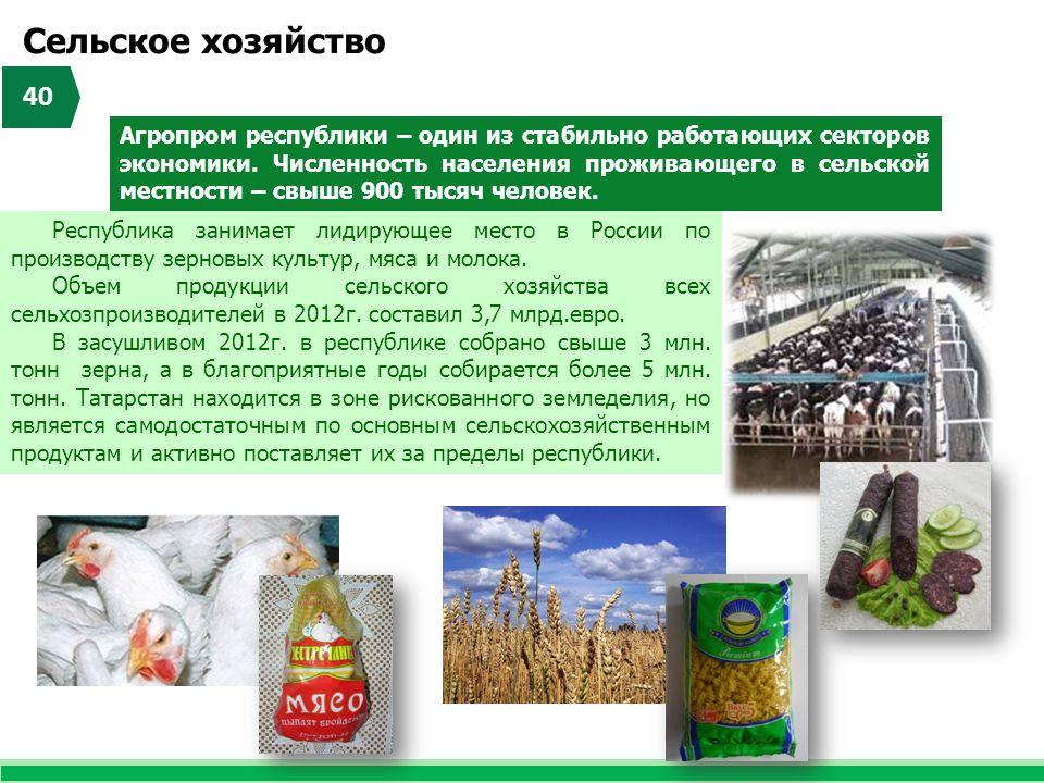 Республика занимает лидирующее место в России по производству зерновых культур, мяса и молока. Объем продукции сельского хозяйства всех сельхозпроизво