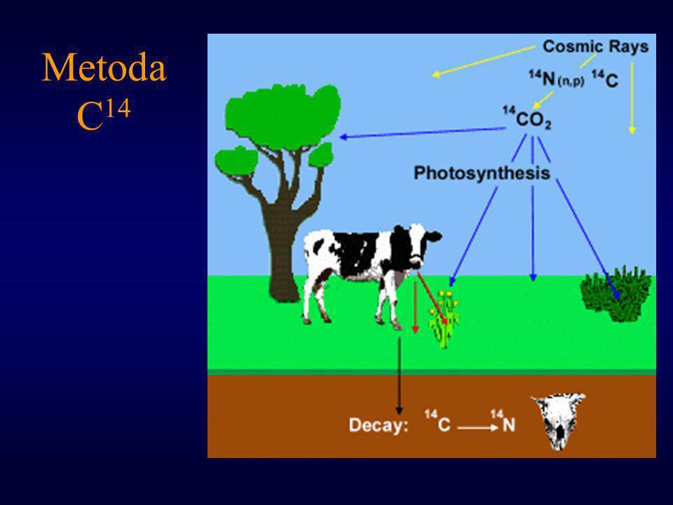 Metoda C 14