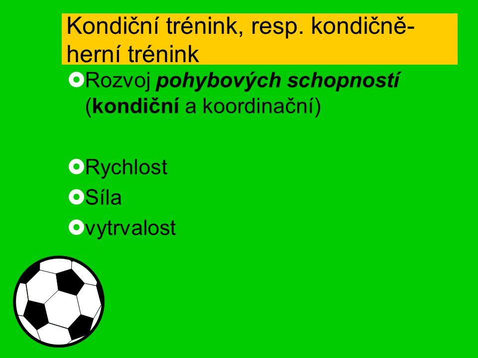 Kondiční trénink, resp. kondičně- herní trénink  Rozvoj pohybových schopností (kondiční a koordinační)  Rychlost  Síla  vytrvalost