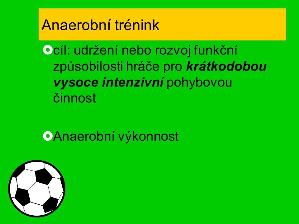 Anaerobní trénink  cíl: udržení nebo rozvoj funkční způsobilosti hráče pro krátkodobou vysoce intenzivní pohybovou činnost  Anaerobní výkonnost