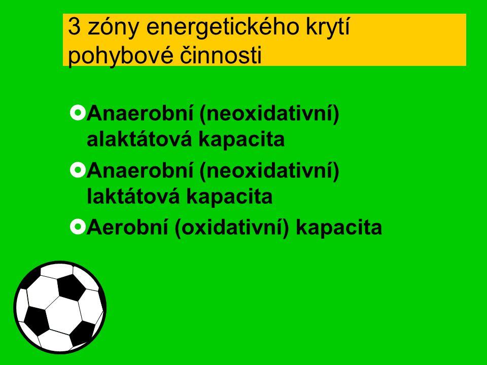 3 zóny energetického krytí pohybové činnosti  Anaerobní (neoxidativní) alaktátová kapacita  Anaerobní (neoxidativní) laktátová kapacita  Aerobní (oxidativní) kapacita