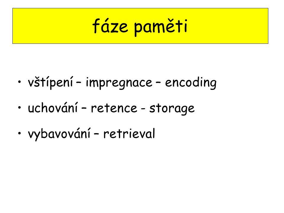 vštípení – impregnace – encoding uchování – retence - storage vybavování – retrieval fáze paměti
