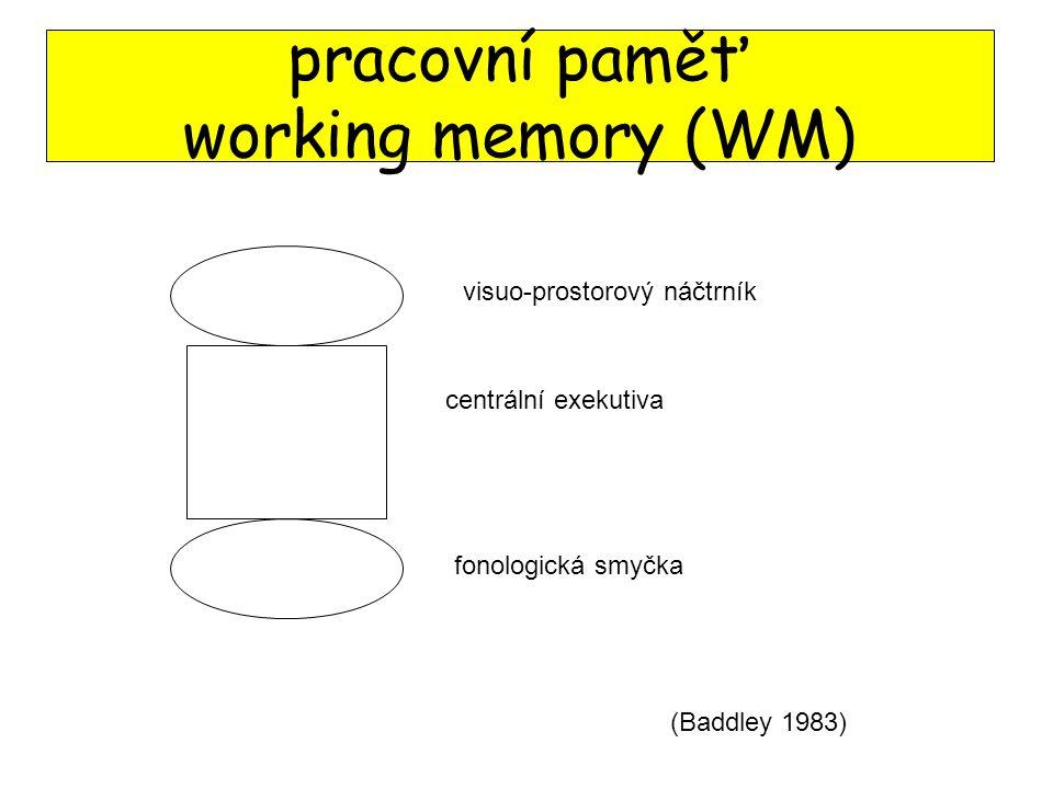 pracovní paměť working memory (WM) centrální exekutiva fonologická smyčka visuo-prostorový náčtrník (Baddley 1983)