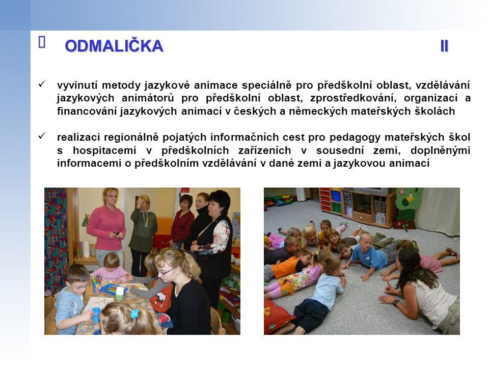 vyvinutí metody jazykové animace speciálně pro předškolní oblast, vzdělávání jazykových animátorů pro předškolní oblast, zprostředkování, organizaci a