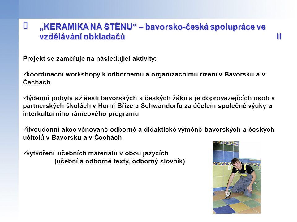Projekt se zaměřuje na následující aktivity: koordinační workshopy k odbornému a organizačnímu řízení v Bavorsku a v Čechách týdenní pobyty až šesti b