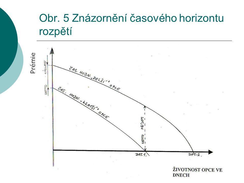 Obr. 5 Znázornění časového horizontu rozpětí Prémie