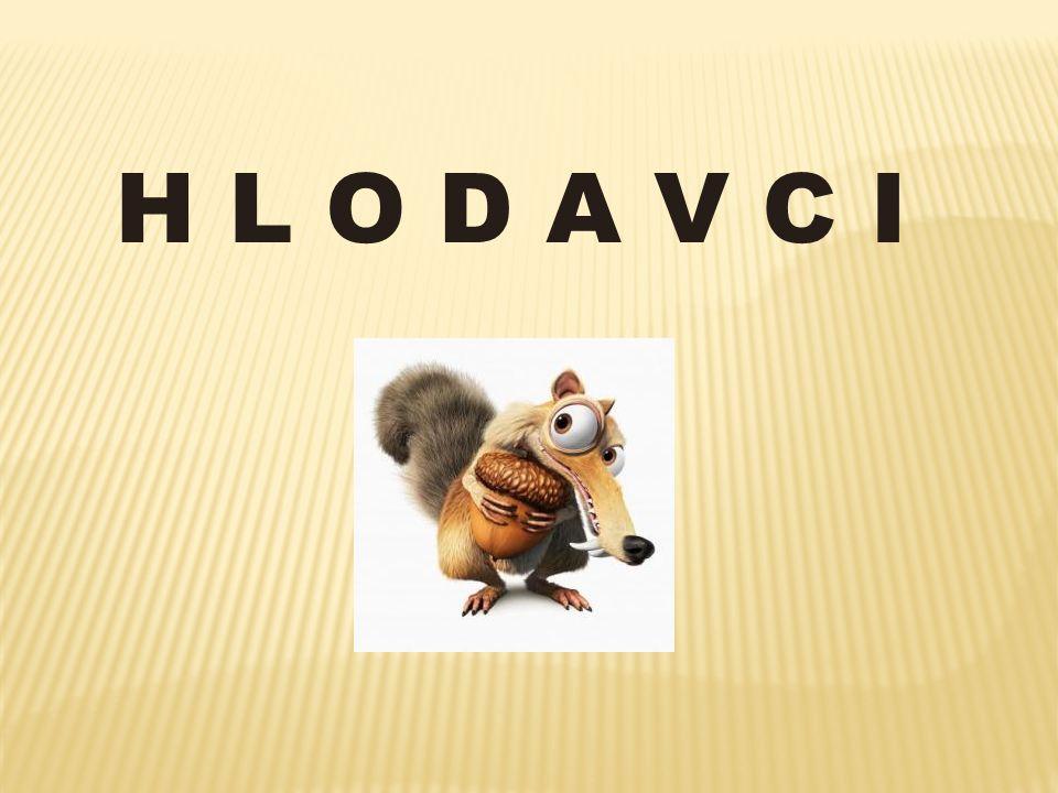 H L O D A V C I