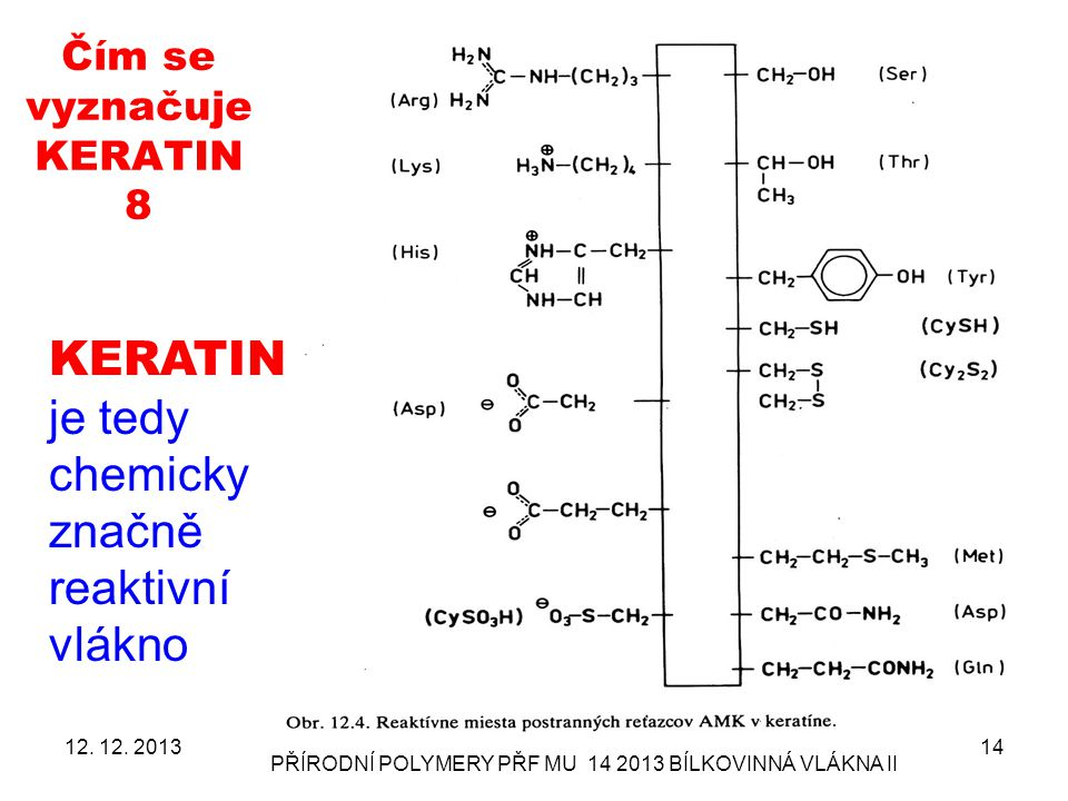 Čím se vyznačuje KERATIN 8 12. 12. 2013 PŘÍRODNÍ POLYMERY PŘF MU 14 2013 BÍLKOVINNÁ VLÁKNA II 14 KERATIN je tedy chemicky značně reaktivní vlákno