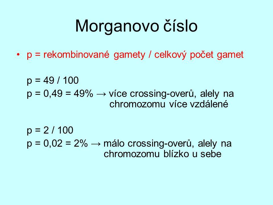 Morganovo číslo p = rekombinované gamety / celkový počet gamet p = 49 / 100 p = 0,49 = 49% → více crossing-overů, alely na chromozomu více vzdálené p
