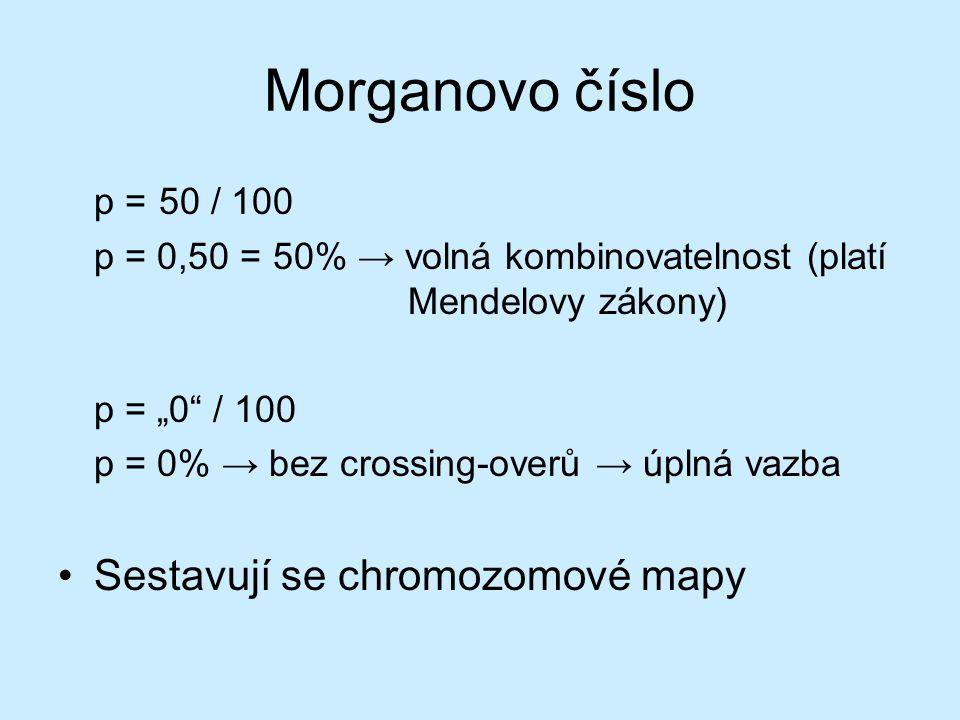 """Morganovo číslo p = 50 / 100 p = 0,50 = 50% → volná kombinovatelnost (platí Mendelovy zákony) p = """"0"""" / 100 p = 0% → bez crossing-overů → úplná vazba"""