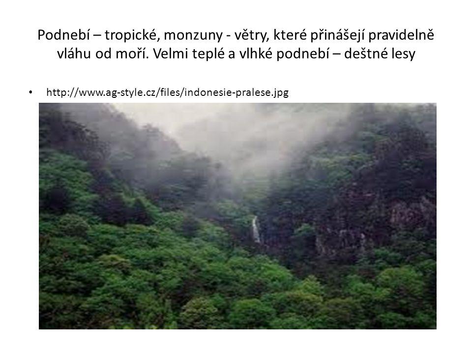 Podnebí – tropické, monzuny - větry, které přinášejí pravidelně vláhu od moří. Velmi teplé a vlhké podnebí – deštné lesy http://www.ag-style.cz/files/