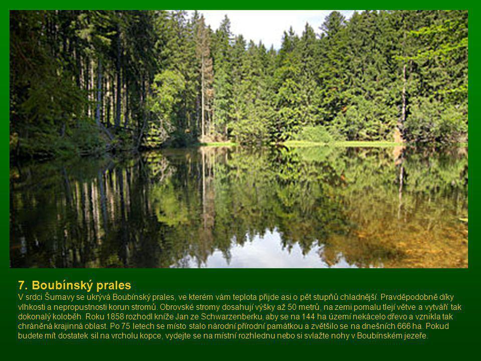 Mofeta v rezervaci Soos Soos leží 6 km severovýchodně od Františkových Lázní. Rezervace byla vyhlášena v roce 1964 na ploše 221 ha. Přístupná je však
