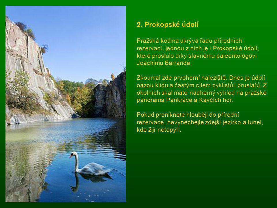 1. Poušť v jižních Čechách Jižní Čechy mají hustou síť rybníků a řek, ale nedaleko Veselí nad Lužnicí na okraji chráněné krajinné oblasti Třeboňsko se