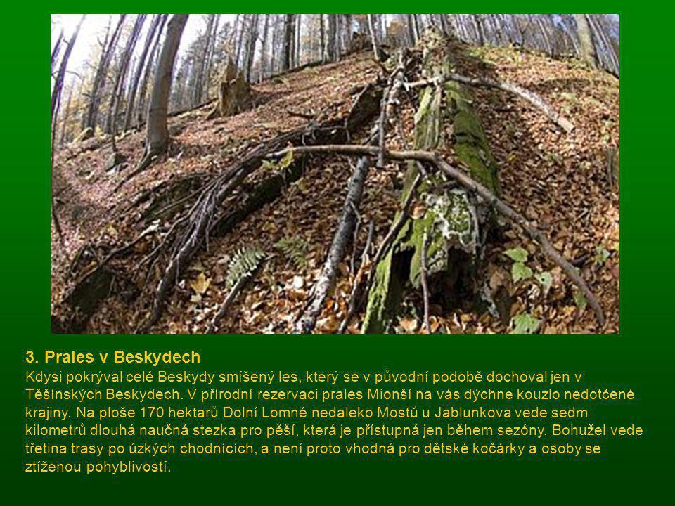 2. Prokopské údolí Pražská kotlina ukrývá řadu přírodních rezervací, jednou z nich je i Prokopské údolí, které proslulo díky slavnému paleontologovi J